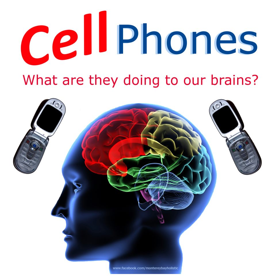 the dangers of cell phones Exposure to cell phones before birth and afterward may increase a child's risk for expert blog dangers after cell phone use in pregnancy:.